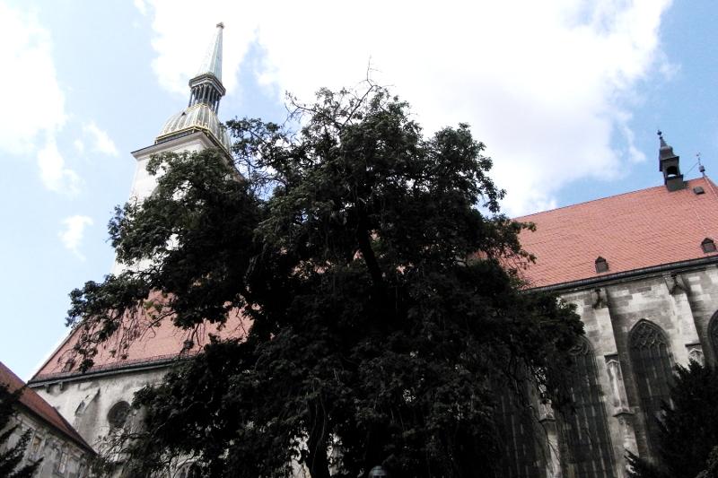 Martinsdom Bratislava Slowakei