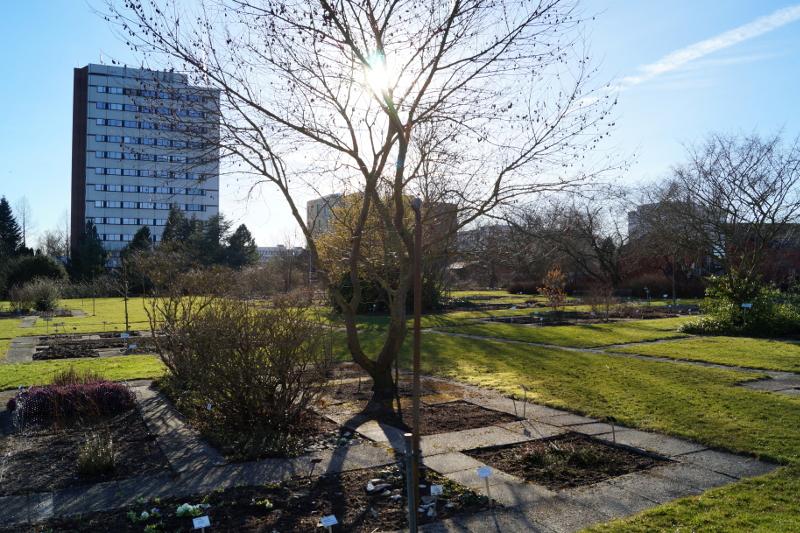 Kiel botanischer Garten