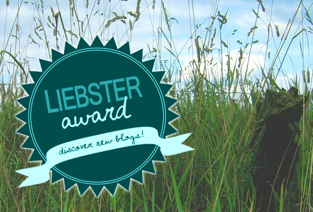 Liebster Award Die Gradwanderung