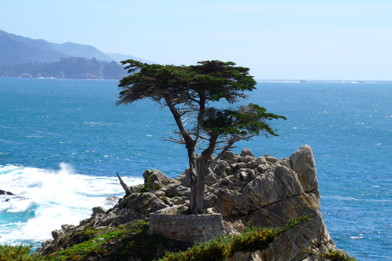 17 Mile Drive Pacific Coast Highway