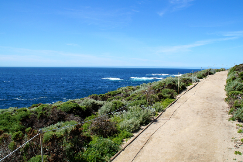 Highway 1 Pacific Coast Highway