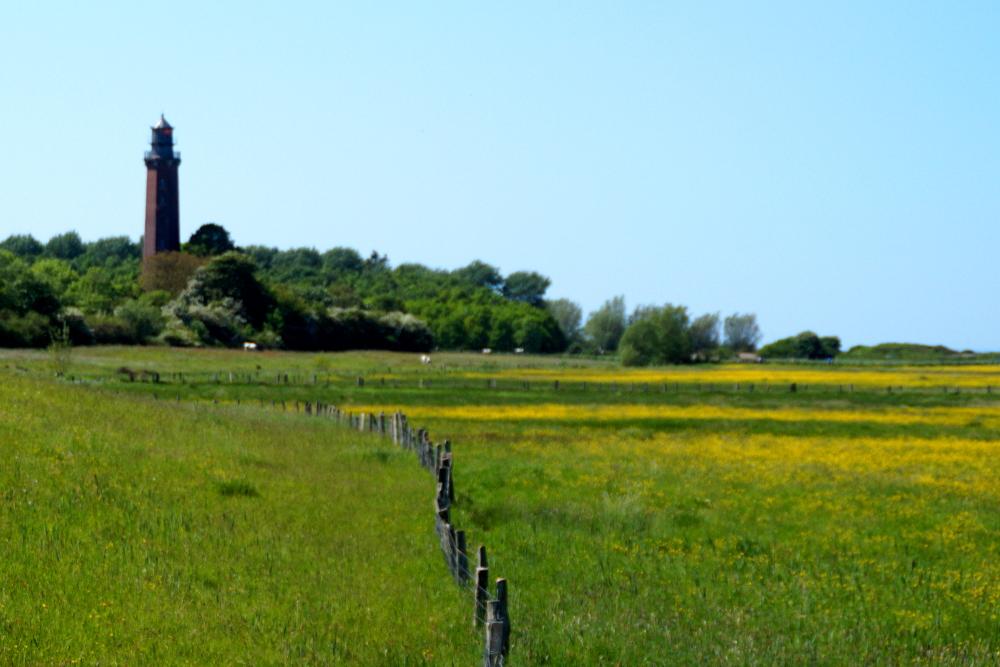 Columbia Hike and Run Schleswig-Holstein Hessenstein Gut Panker Leuchtturm Neuland