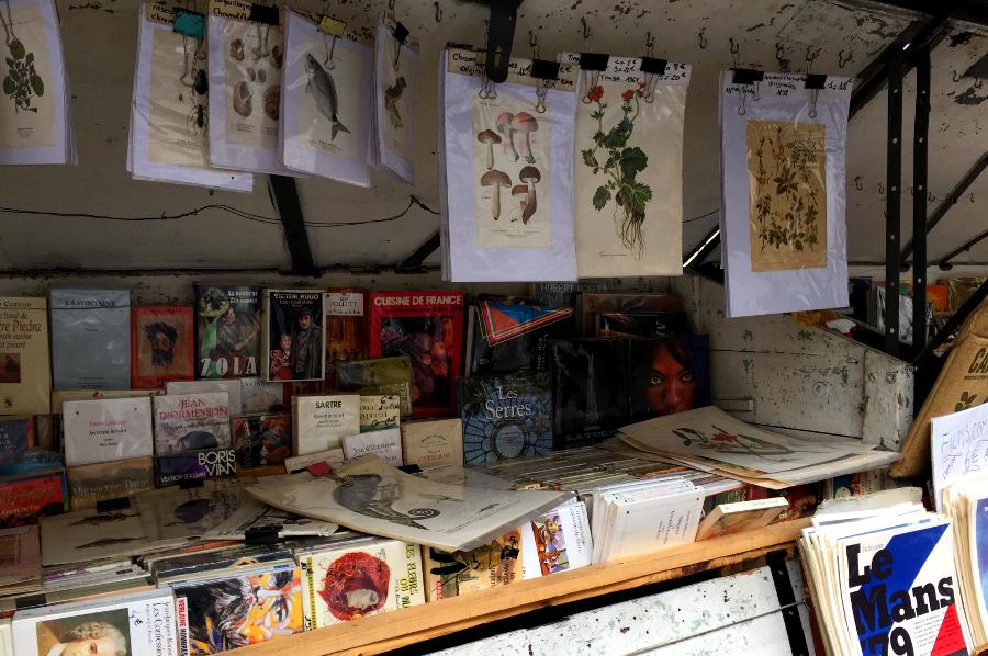 Straßenbuchhändler Paris