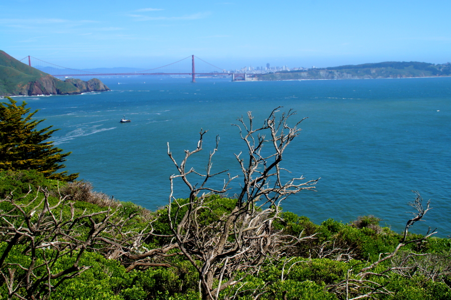 Golden_Gate_Bridge_California_San_Francisco