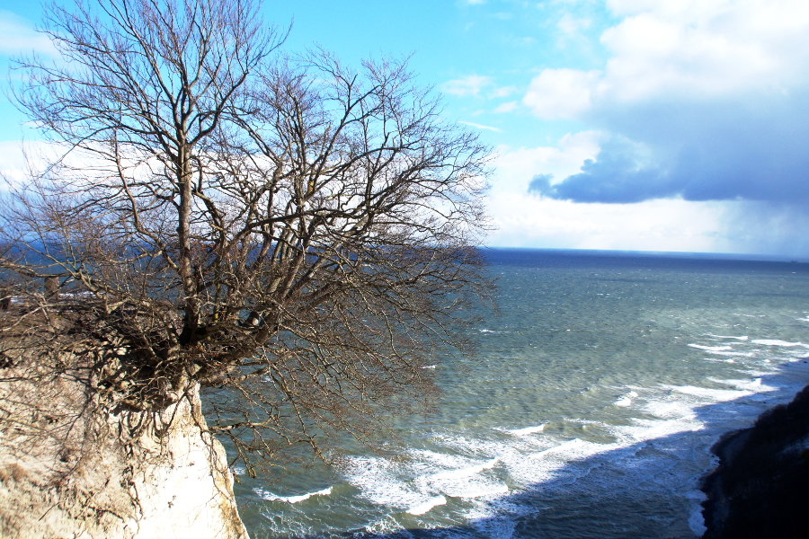 Nationalpark_Jasmund_Rügen