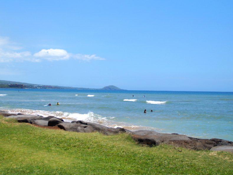 Maui Meeresschildkröten