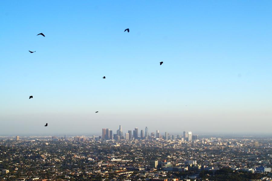 Travelguide Los Angeles