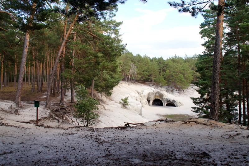 Harz entdecken: Sandhöhlen im Heers im Harz