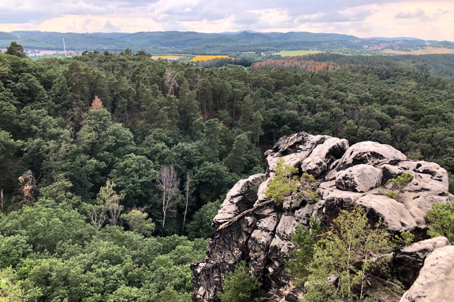 Harz entdecken Wandern rund um den Regenstein