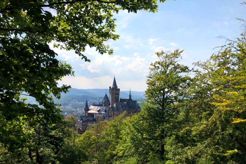 Burgen und Burgruinen Harz
